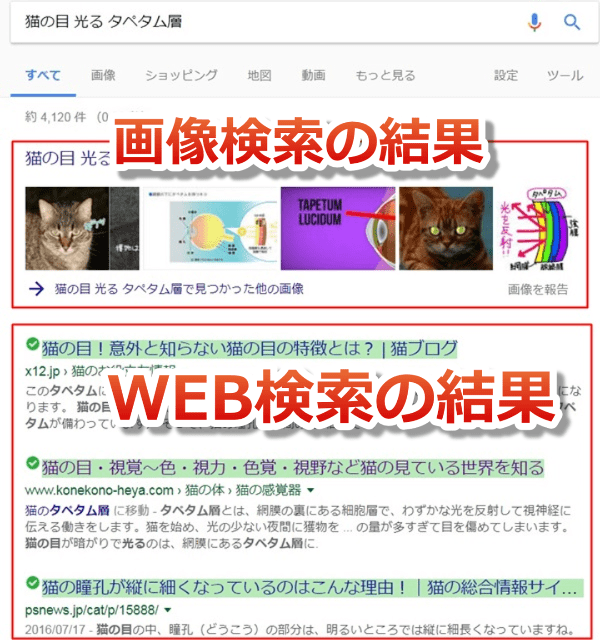 WEB検索をすると画像検索の上位の画像が表示される